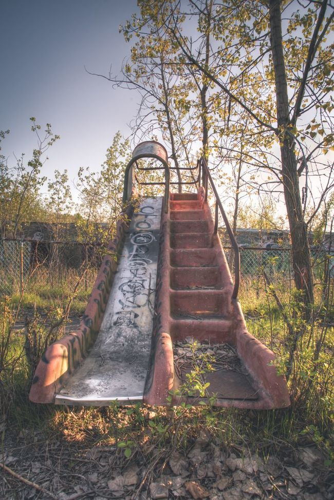 37 Photos How Nature Reclaims What We Abandon